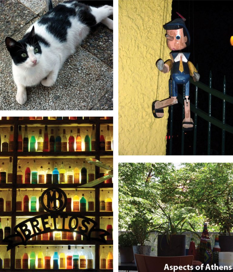 out and about athens: cat, Paramythi, Vrettos, decoration
